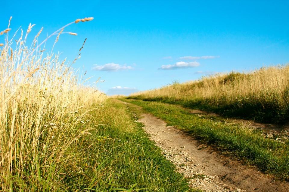 A-breath-of-fresh-air-create-your-own-clean-air-space-960x640